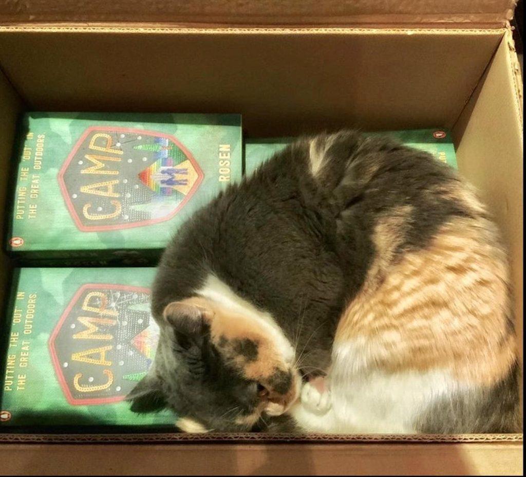 """L. C. Rosen's napoleon cat Waterloo """"Lulu"""""""
